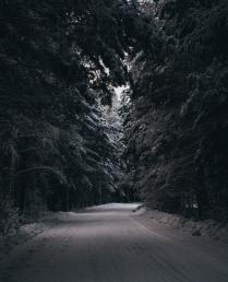 дорога в сказку