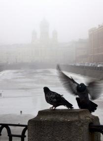 Туманный Петербург