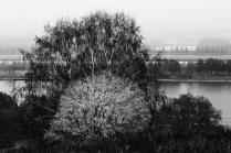 Осень наКрылатских холмах