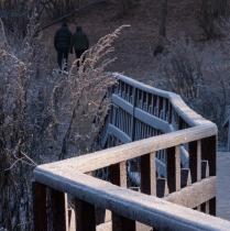 прогулка морозным утром