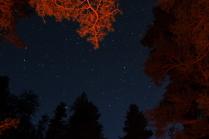 холодная ночь теплых красок