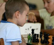 Главная шахматная фигура -это черепашка ниндзя