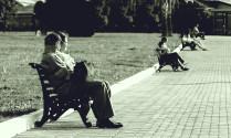 Пары в парке