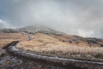 Дорога в зиму