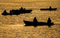 Лов селедки на Белом море