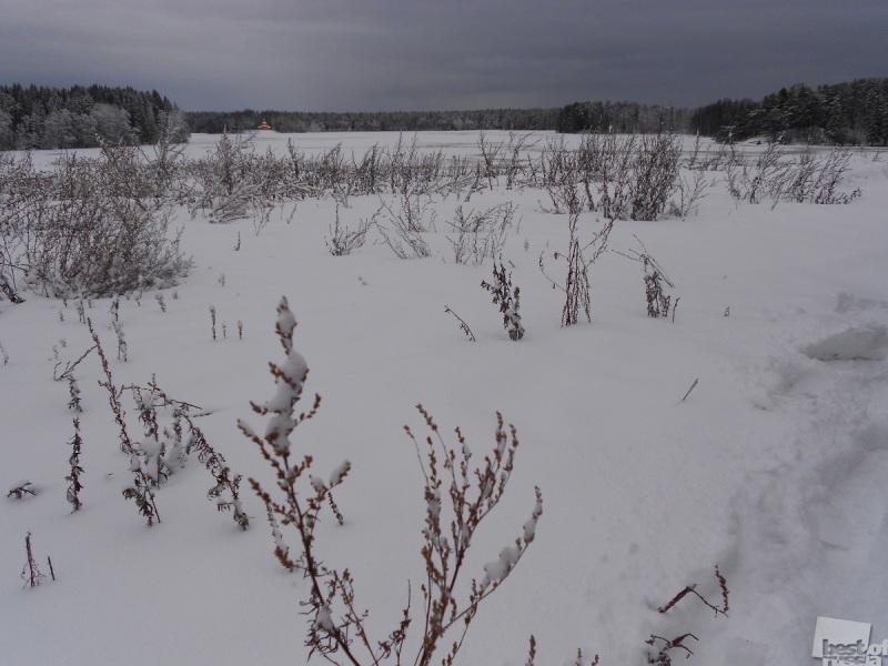 Снегами России