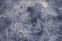 Ледяные кристаллы.