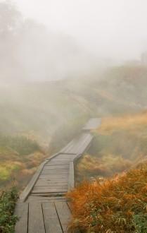 Осенняя тропа Долины гейзеров