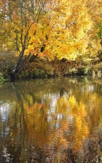 Осенняя акварель.