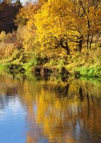 Осень на реке Анграпа.
