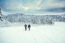 Белая прогулка