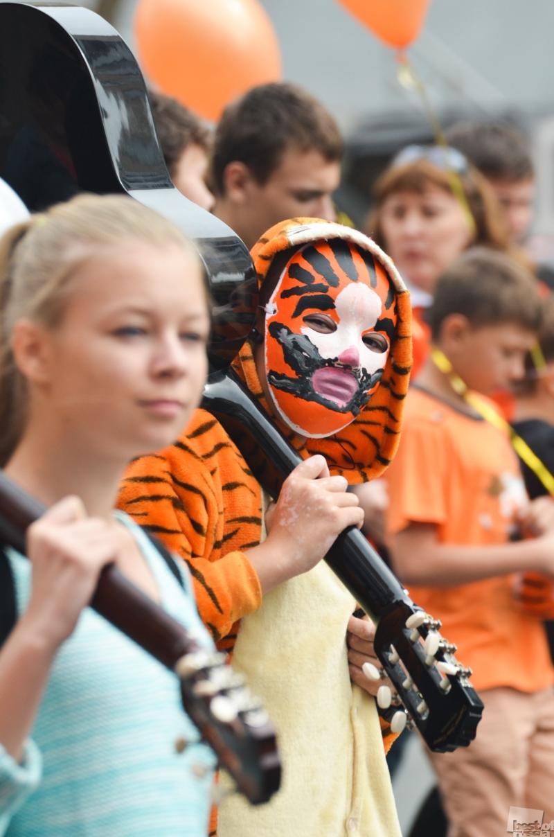 Тигры среди нас