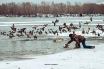 Охотник на уток