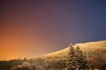 Цвет Северного Кавказа