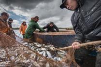 Рыбаки Ямала
