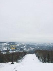 Зимняя мечта