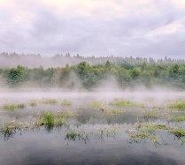 Утренняя дымка на р. Чуовая