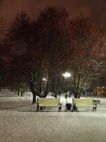 Снежная дружба