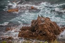 Сила моря