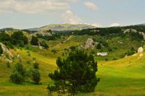 Природа Крыма.