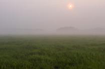 утро болот