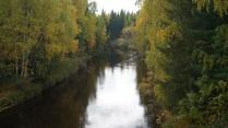 Река в Осеннем бору