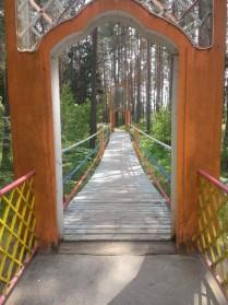 Подвесной мост через лес к озеру