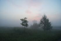 загадочное утро