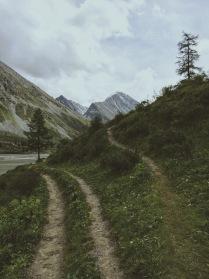 Все дороги ведут на Алтай