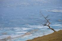Ледяное одиночество