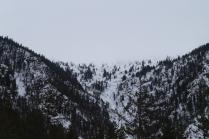 Снежный Борус