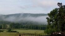 Забытый туман
