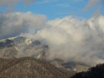 Витая в облаках