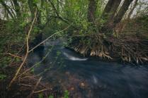 река Барская канава