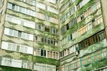 бетонная зелень