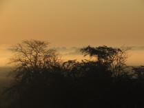 Утро туманное, утро золотое..
