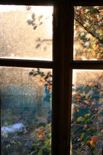 Поздняя осень в окне