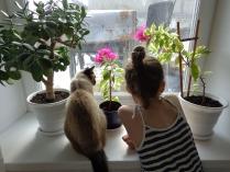 Наблюдаем за птичками.
