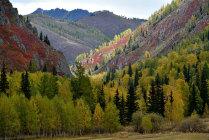 Осенний Алтай