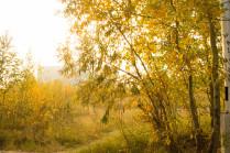 Красота Сибири