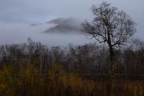 Туманы Камчатки