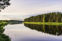 На берегу реки Медведицы
