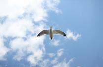 Пролетая над Байкалом