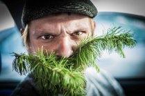 Хвойная Борода