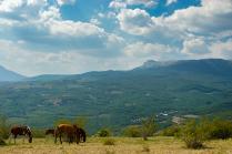 Вид на северную Демерджи
