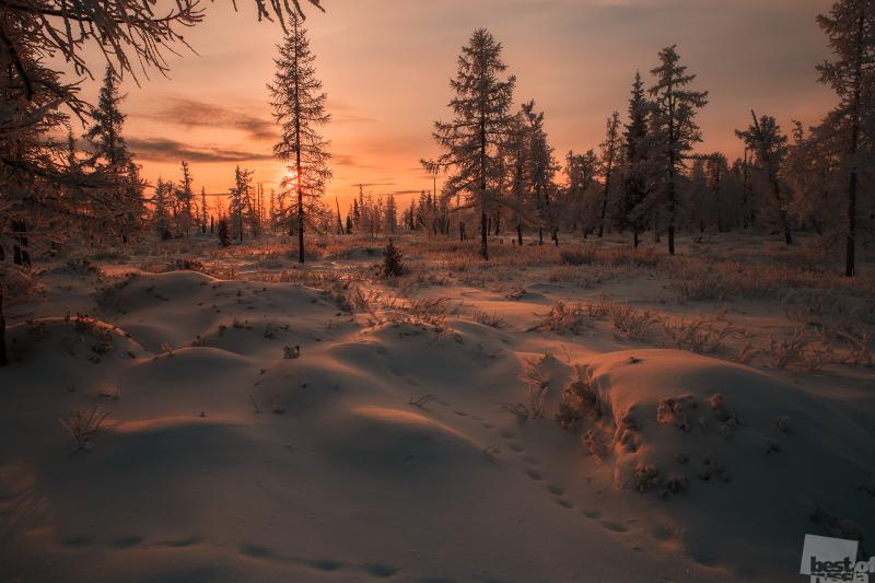 Зимняя карамель