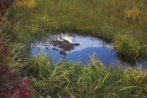Зеркала Камчатских озер