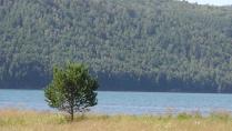 Чудо природы-Природа Байкала
