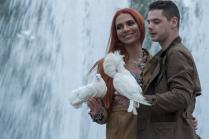 Любовь и голубки