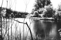 время быстрая река,ни кого не обойдет